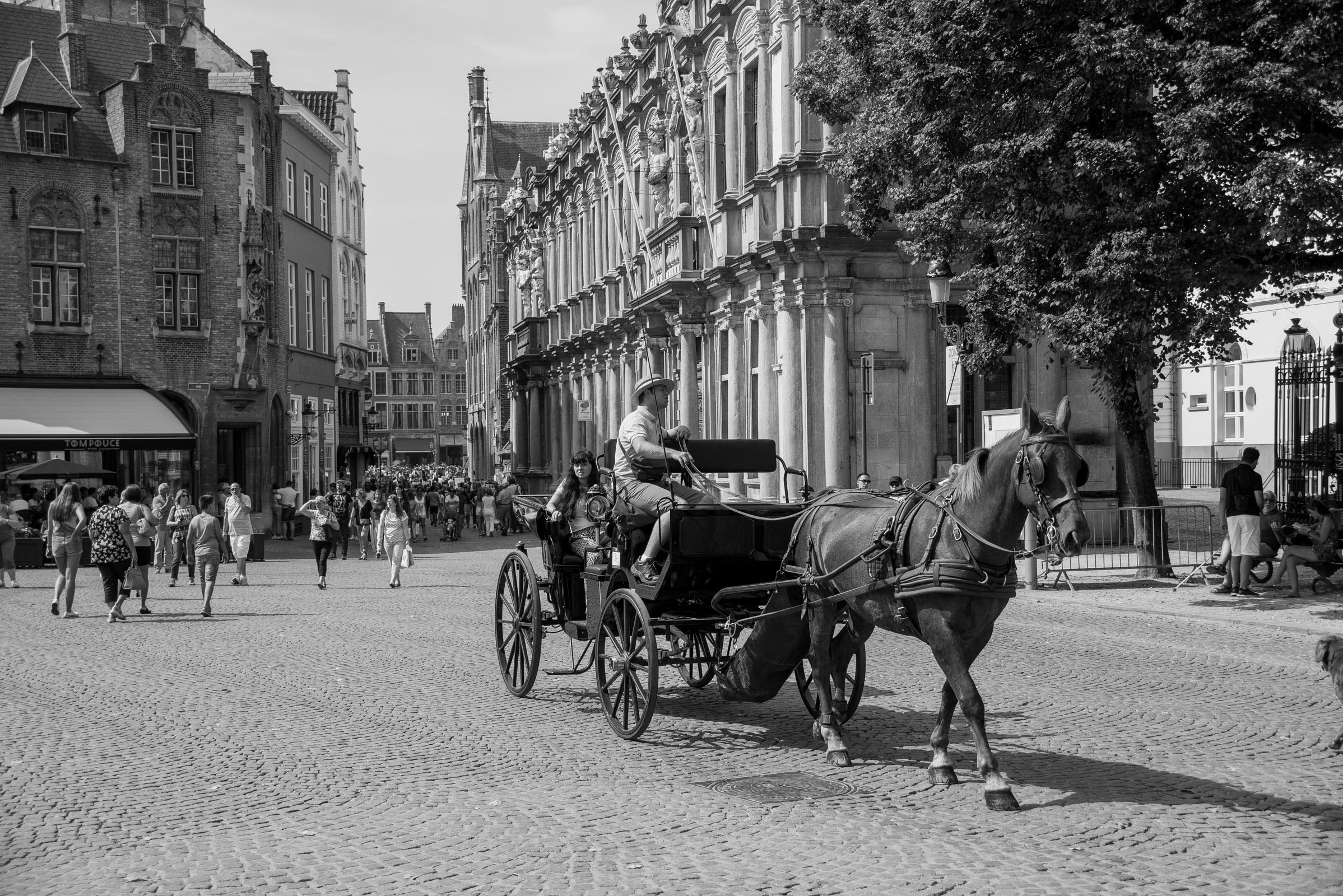 Horse and Cart - A Travel Guide to Bruges, Belgium